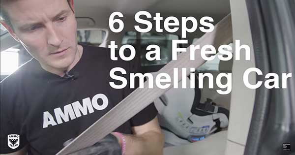 Car Odor Removal Technique Takes Just 6 Steps 2