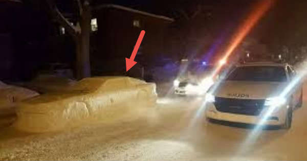 This Guy Fooled The Police With A Fake Snow Car 1