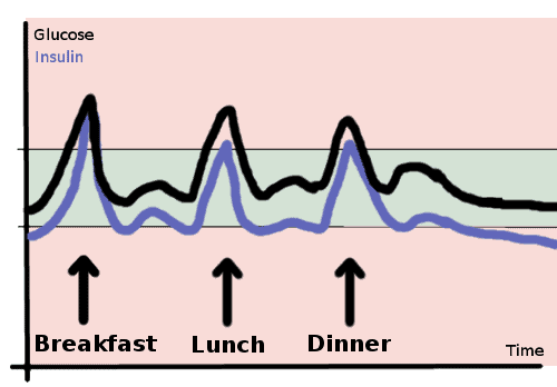 glucose and insulin with 3 meals - schema
