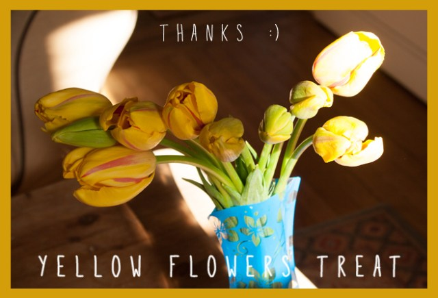yellow-flowers-treat