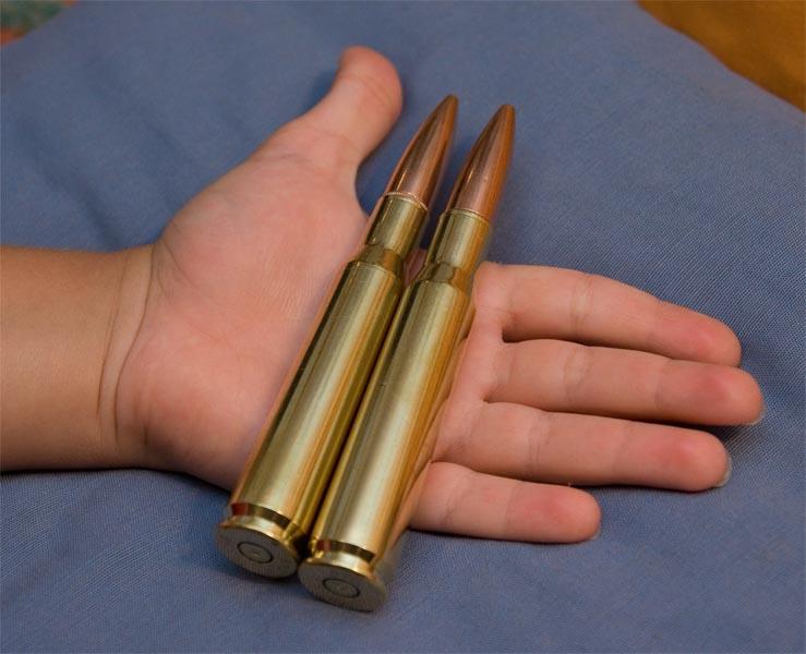 Cartuchos .50 BMG