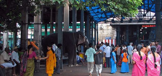 Elephant_and_bustle_of_Sri_Kalahasti_temple