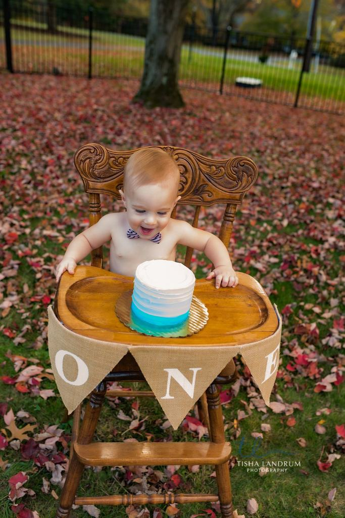 Baby Photographer In Camp Hill Photographing First Birthday Cake Smash