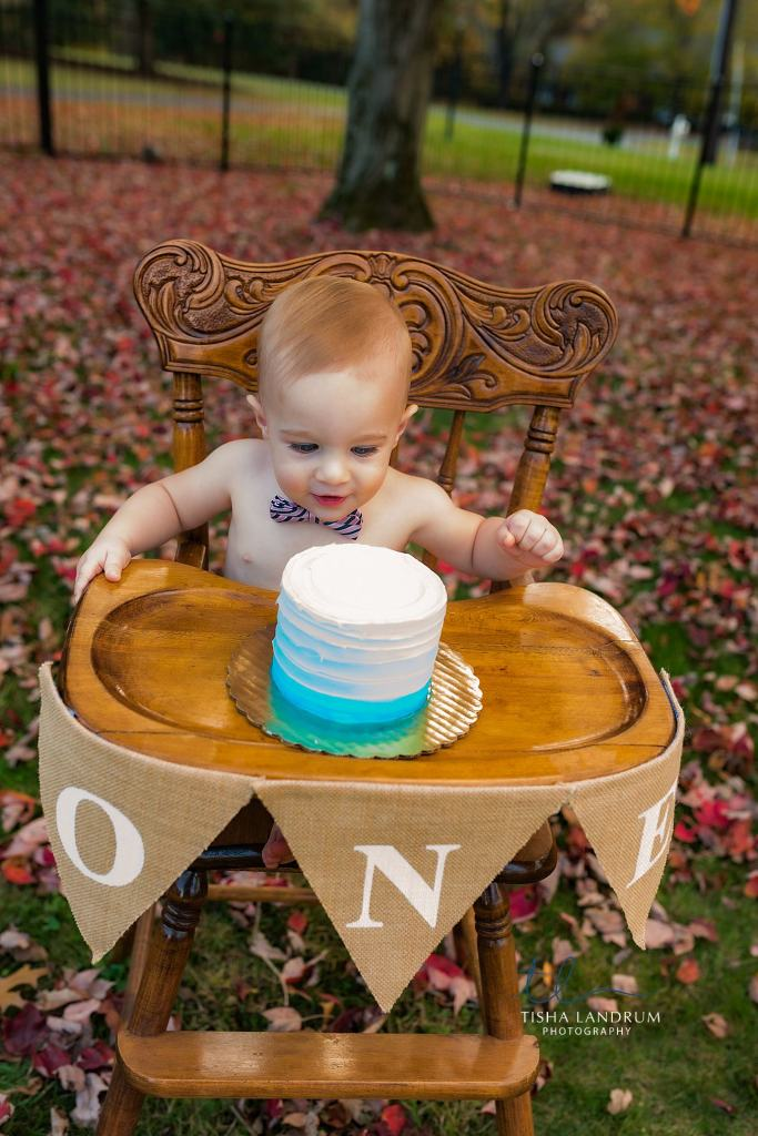 Baby Photographer In Camp Hill Photographing First Birthday At Home