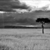 Maasailand In Black & White