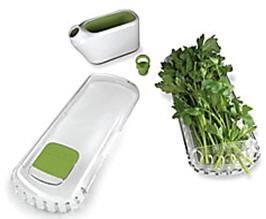 salad.24