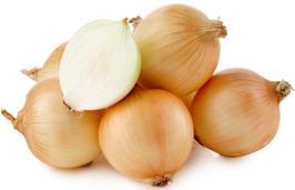 onion.31