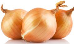 onion.32