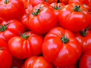 tomatoes-5356_640