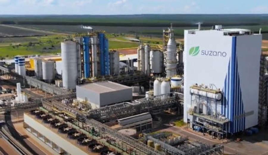 , Suzano will invest more than R$ 14 billion in new pulp plant