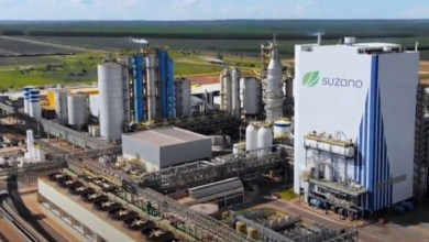 , Suzano will invest more than R$ 14 billion in new pulp plant