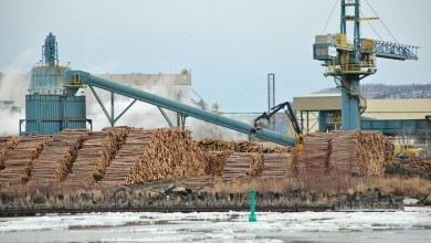 , Resolute Forest Products invests $50 million in its sawmills