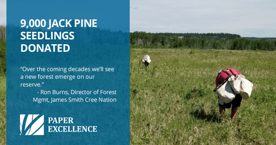 , Paper Excellence donates tree seedlings to the James Smith Cree Nation