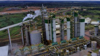 , Eldorado sets new record for daily pulp production