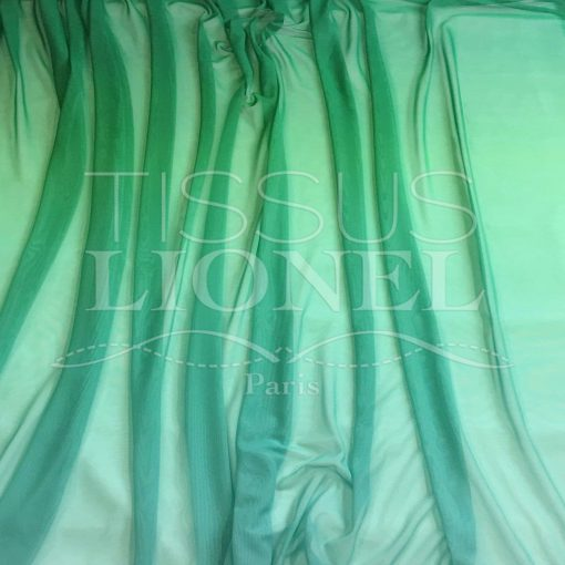 Résille dégradé Vert Turquoise