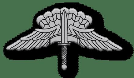 ArmA 3 Clan MilSim - Commander silber 3