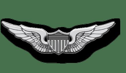 ArmA 3 Clan MilSim - Pilot silber 3