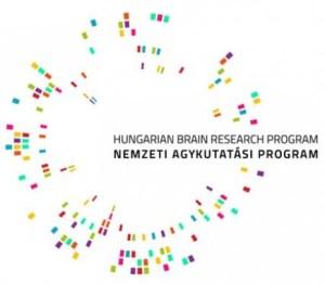 brain-research-program