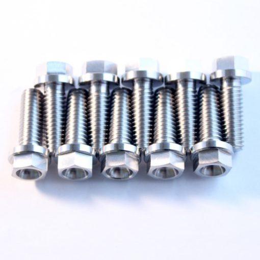 TITANIUM 5/16 UNC by 7/8 bolt