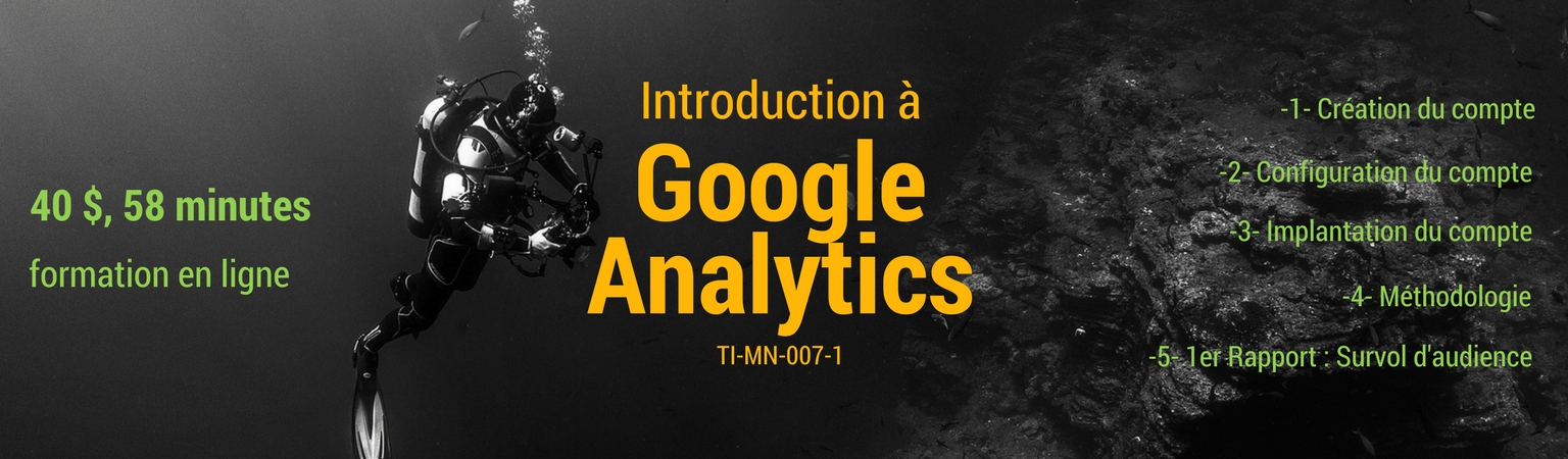 Introduction à Google Analytics – cours en ligne