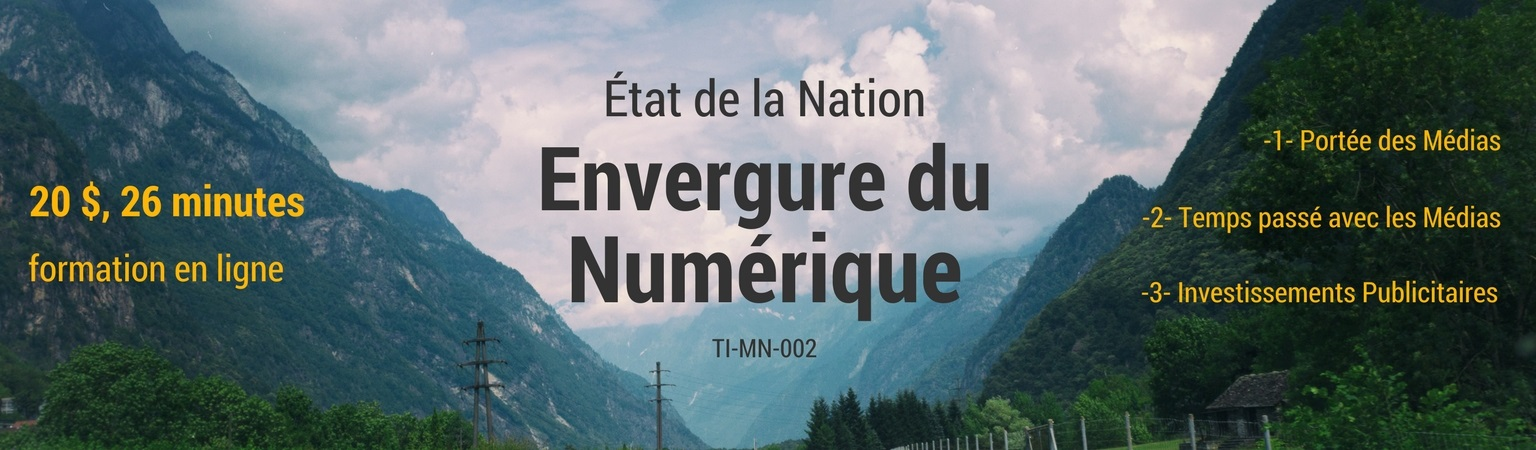 Envergure du Marketing Numérique