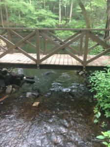 Crossing the Bridges 51