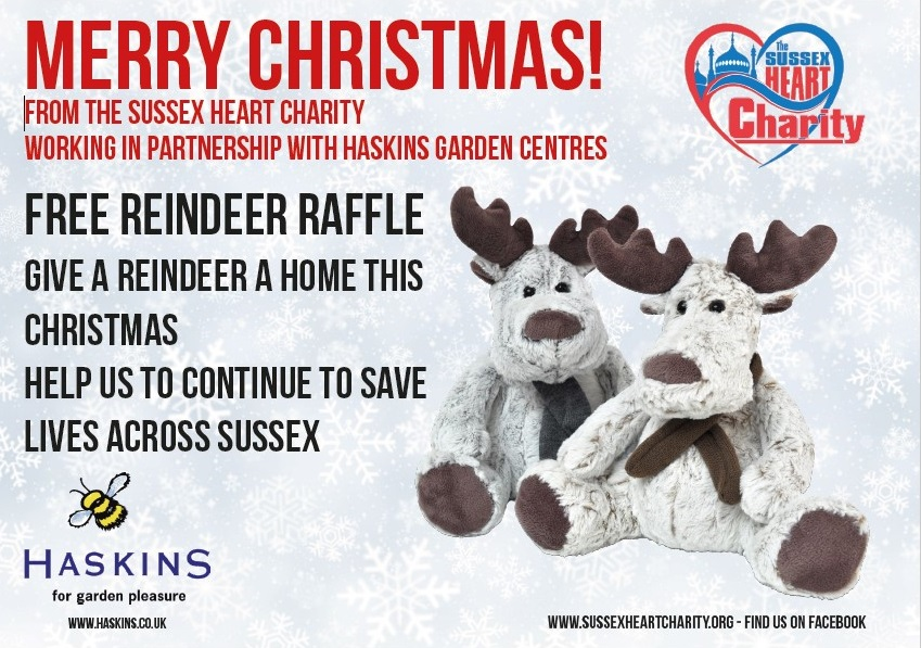 Haskins Reindeers to win Sussex Heart Charity on Title Sussex Magazine www.titlesussex.co.uk