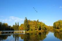 Lakehead University, Thunder Bay, Ont. Autumn at Lakehead University's Lake Tamblyn at its Thunder Bay Campus.