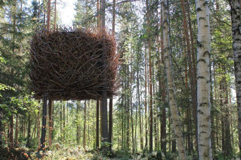 The Bird's Nest Tree House (Sweden) This tree house, by the creators of the Tree Hotel, might confuse the birds even more. Although it looks like a massive nest from the outside, the house has a modern and high-standard room built inside. (Designed by: inredningsgruppen.se)