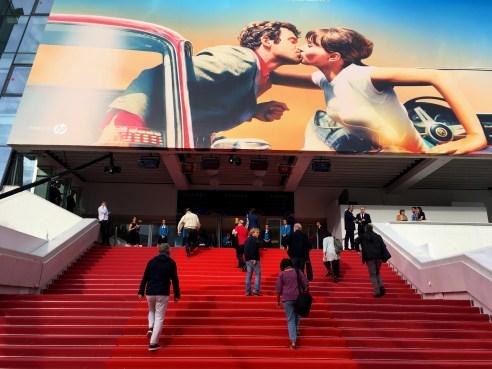 فرش قرمز هفتادویکمین فستیوال کن عکس از مجید موثقی
