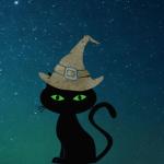 black cat with a magic hat