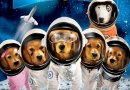 Stories on the Screen: Space Buddies