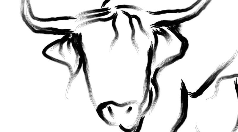 the bull and other stories by michael fine book cover. the art is a black line painting of a bull on white background