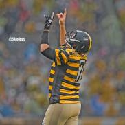 6. Pittsburgh Steelers- $328.12 (photo credit: Pittsburgh Steelers' Official Facebook Page)
