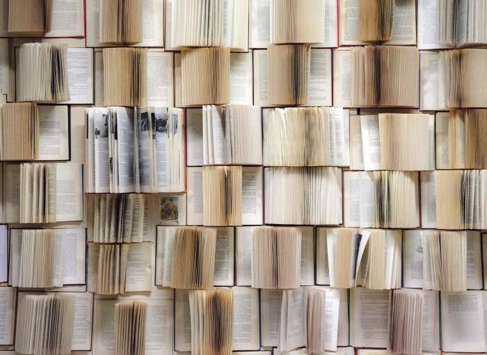 tanti libri aperti su più ripiani