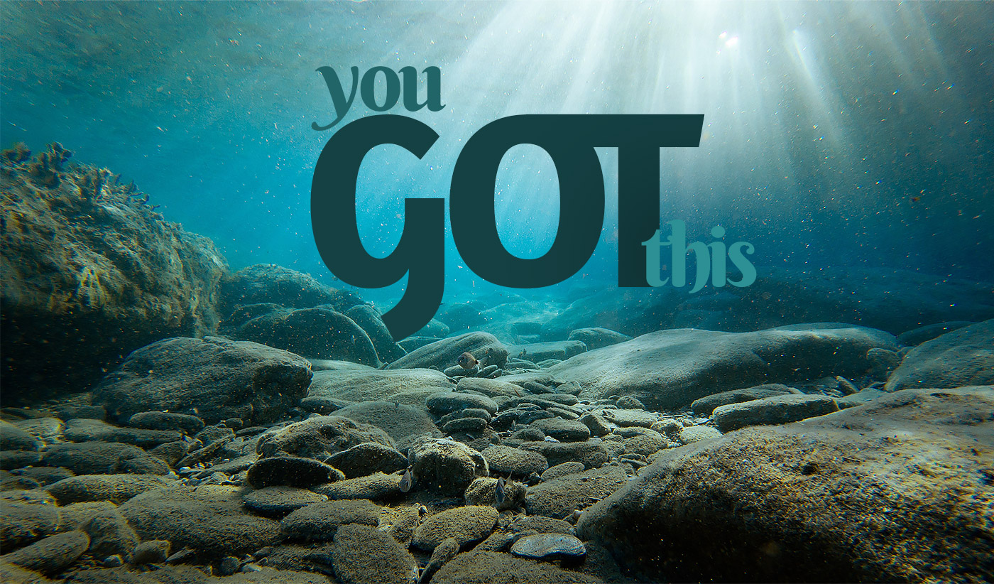 daily inspirational quote image: underwater photograh of moss and rocks and sunshine filtering in from above
