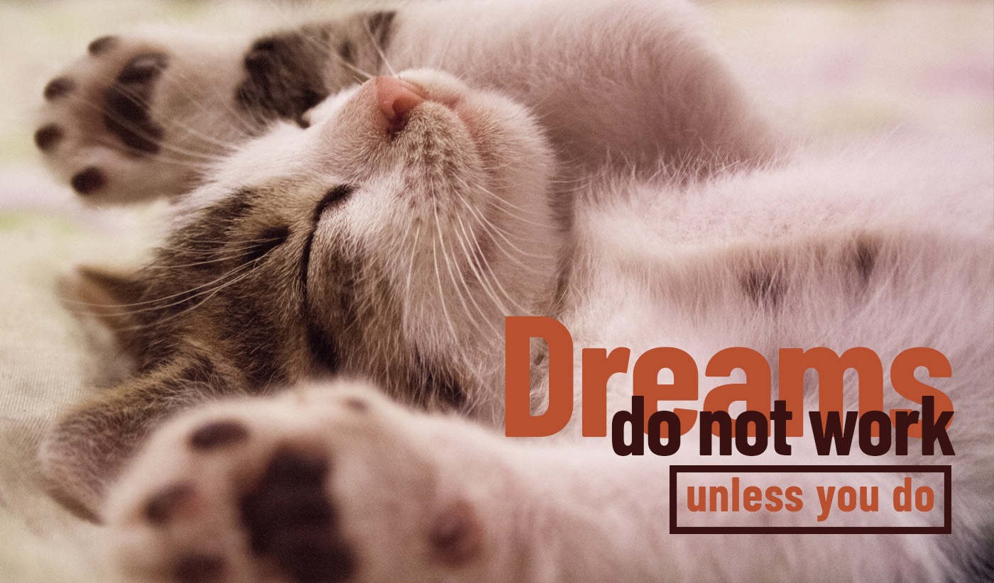daily inspirational quote image: a kitten lying on its back, paws in the air and eyes closed