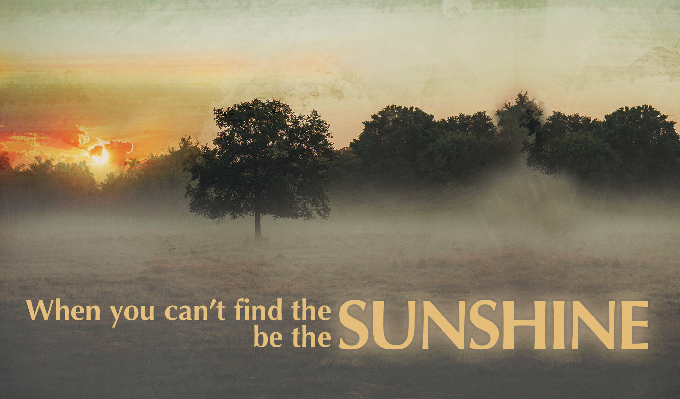 daily inspirational quote image: sunrise in a clearing, with morning fog