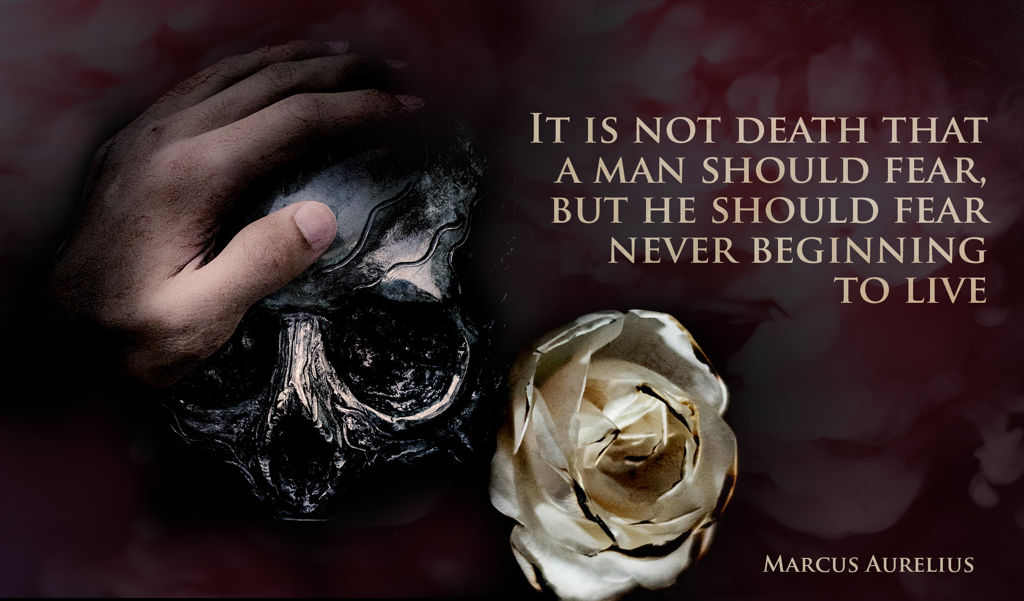 daily inspirational quote image: a hand resting on a skull with a wither rose nearby