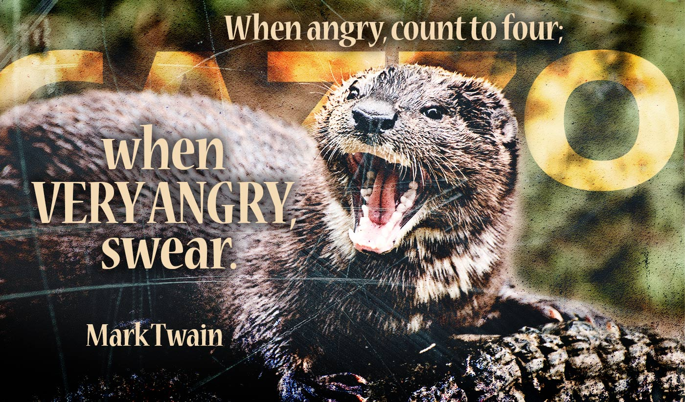 daily inspirational quote image: close up on a very angry otter baring its teeth