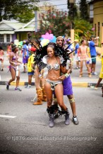 tj876 Jamaica Carnival Road March 2013-101