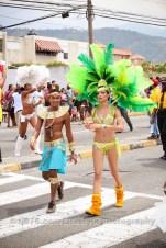 tj876 Jamaica Carnival Road March 2013-23
