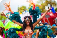 tj876 Jamaica Carnival 2015 (199)