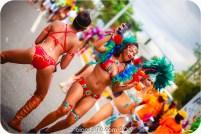 tj876 Jamaica Carnival 2015 (201)