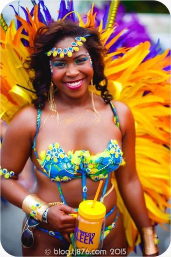 tj876 Jamaica Carnival 2015 (214)