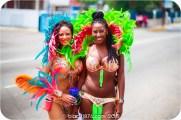 tj876 Jamaica Carnival 2015 (6)