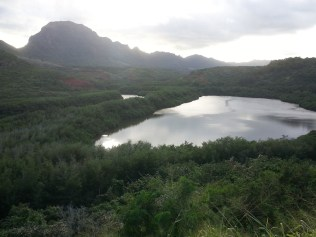 Menehune Fishpond where the early peoples raised fish.