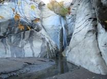 canyon 6