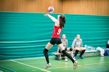 Volleyballet ...