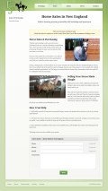 Portfolio item: Erin Shea Dressage - Horse sales page.
